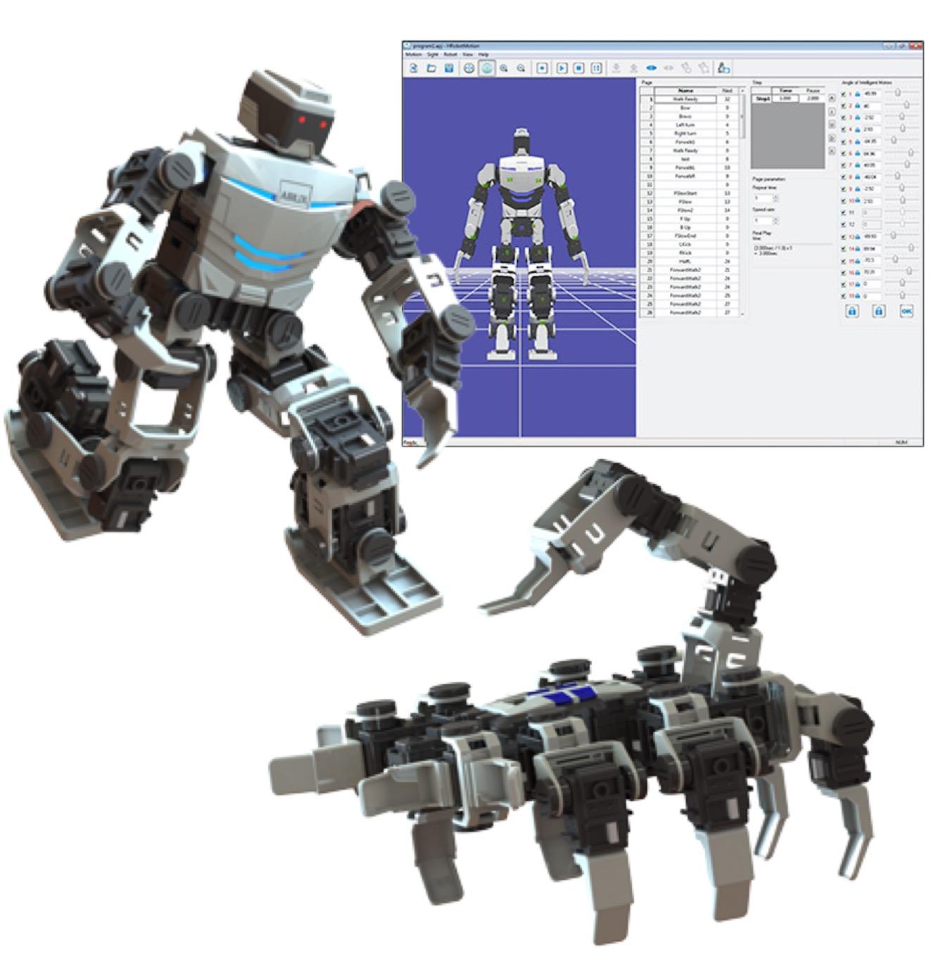 ERIK Robot